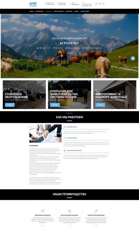 Разработка сайта-визитки сайта для компании по продаже сельхоз оборудорвания