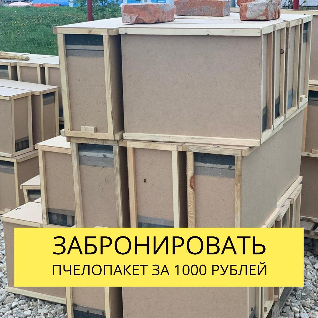 Забронировать пчелопакет за 1000 рублей