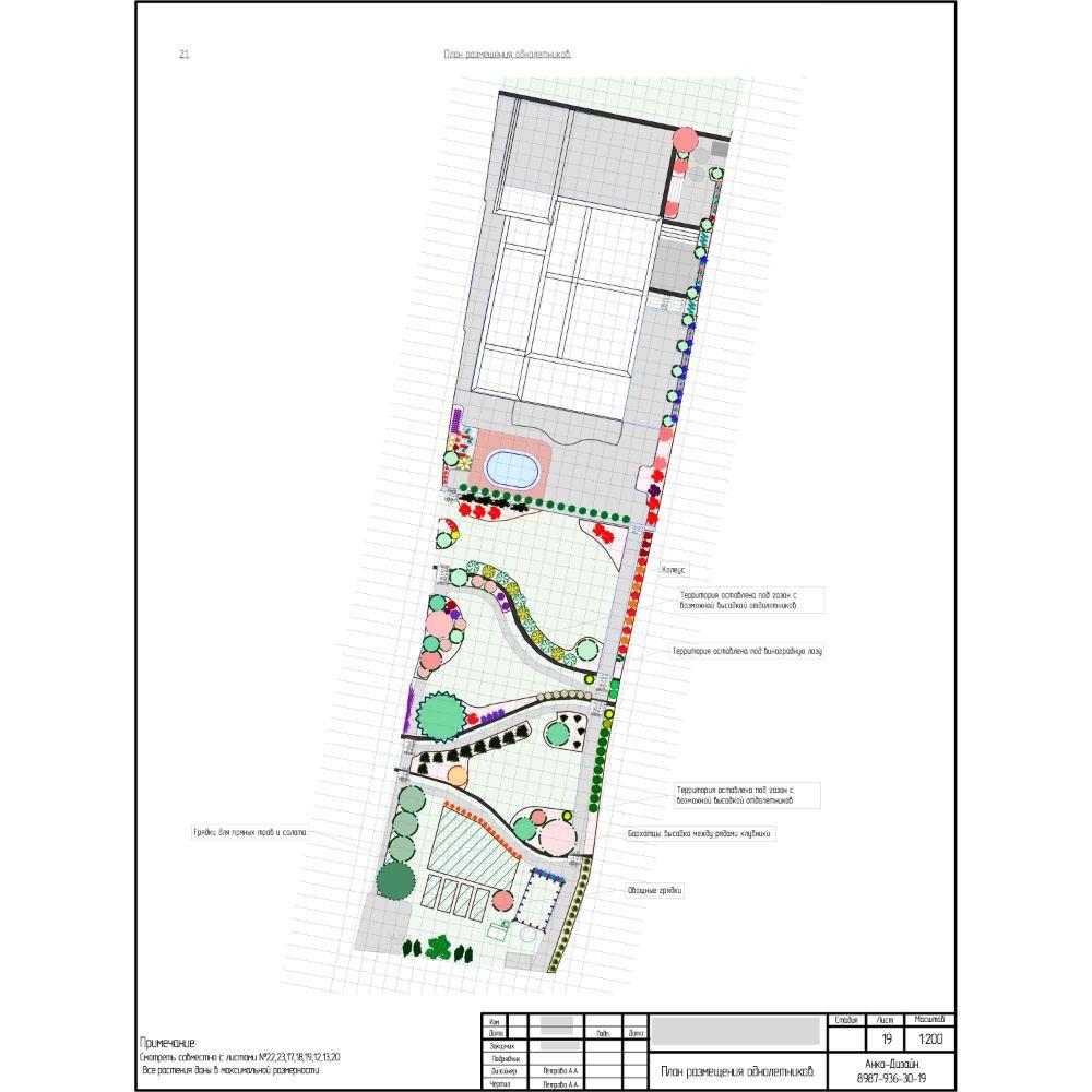 План-размещения-однолетних-растений-в-саду-Ландшафтный-дизайн-сада-AnkoDesign