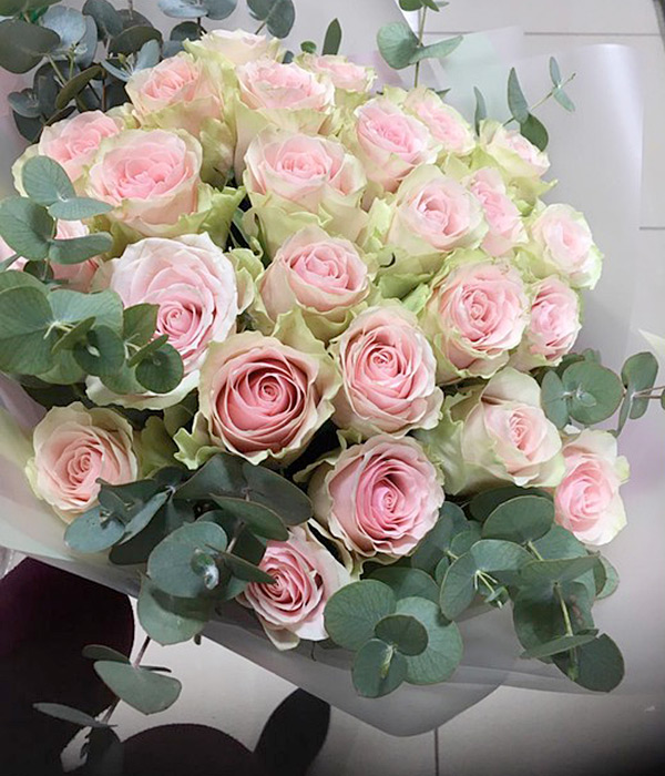25 светлых роз