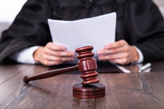 межевание земли через суд
