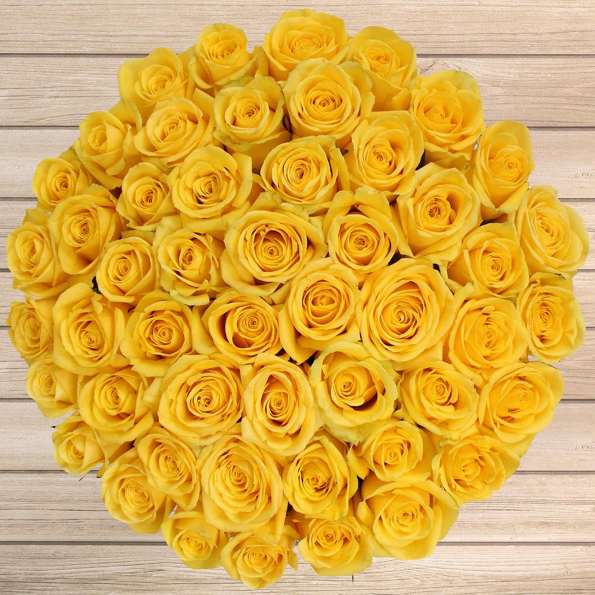 Роза Желтая , 51 штука