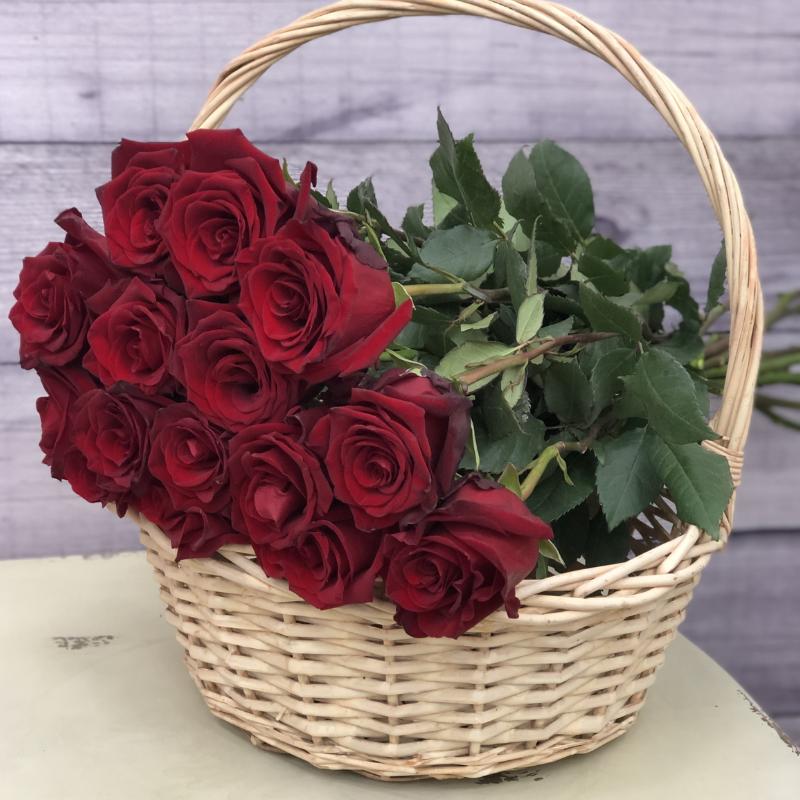 Эквадорская роза 70 см Красная , 15 штук