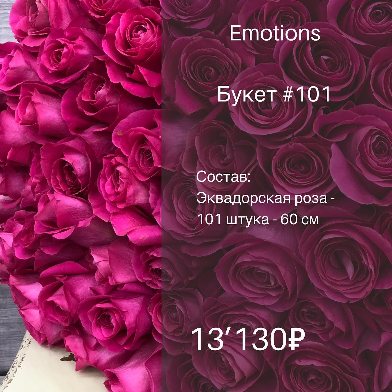 Эквадорская роза 60 см , 101 штука