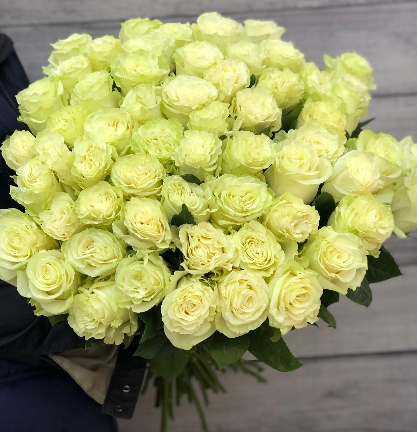 Эквадорская роза белая 60 см - 101 штука