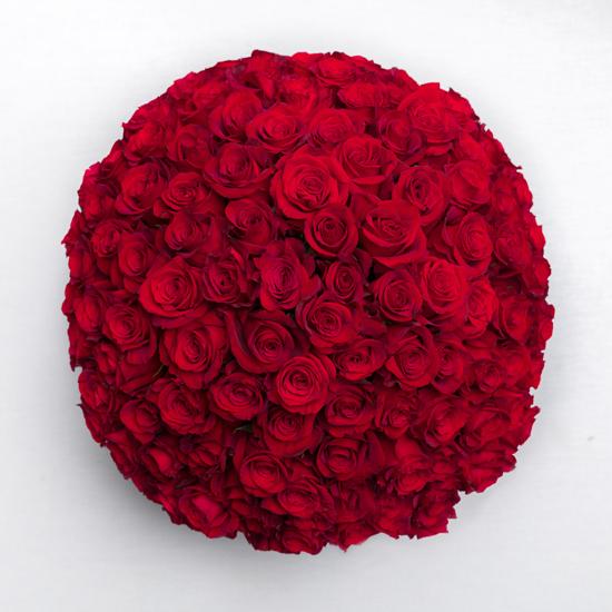 Красная роза 101 штука