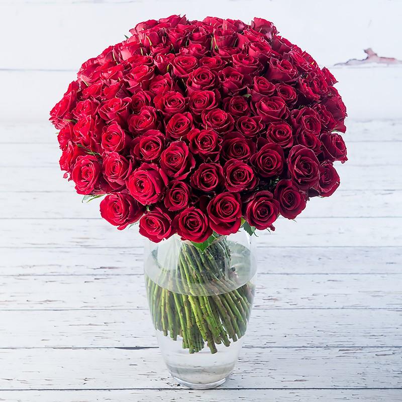 Эквадорская роза Красная 101 штука