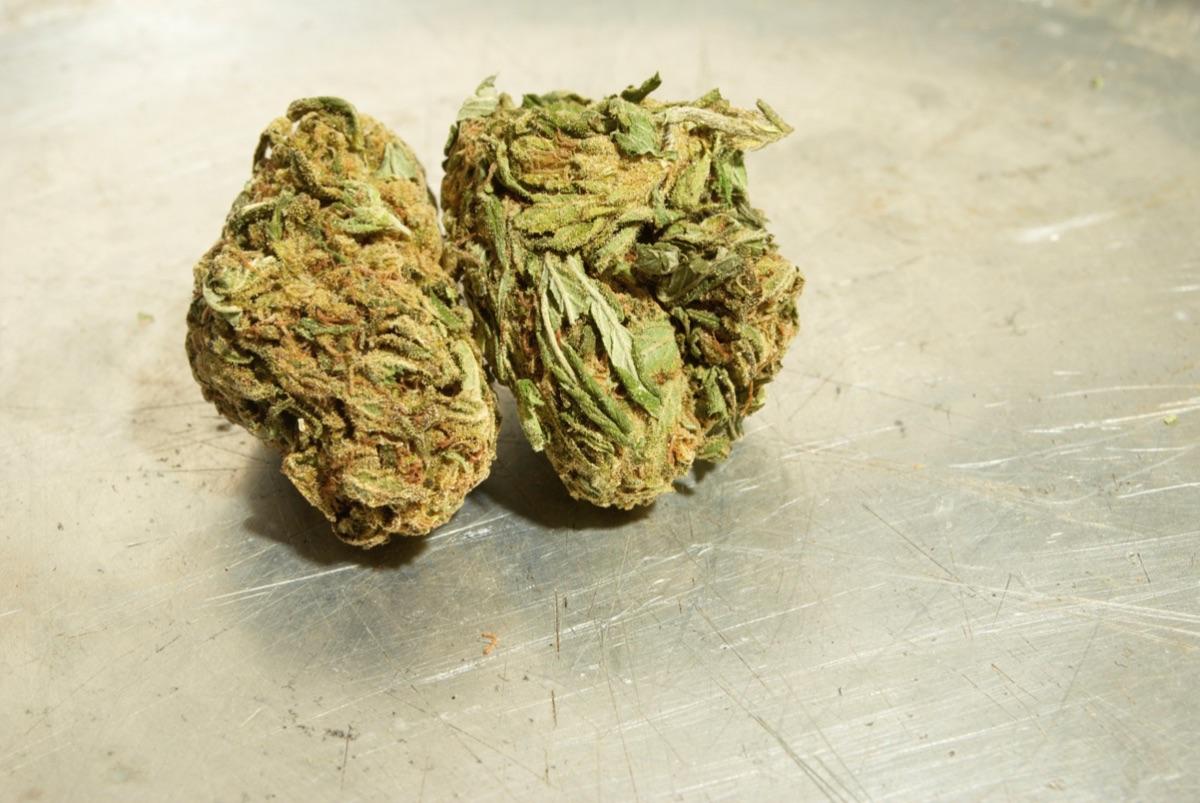 Отличие медицинской марихуаны донорство и марихуана