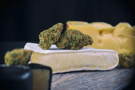 Шишки каннабиса на сыре