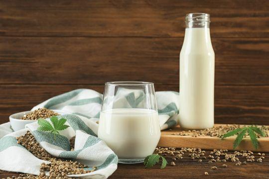 конопляное молоко в стакане