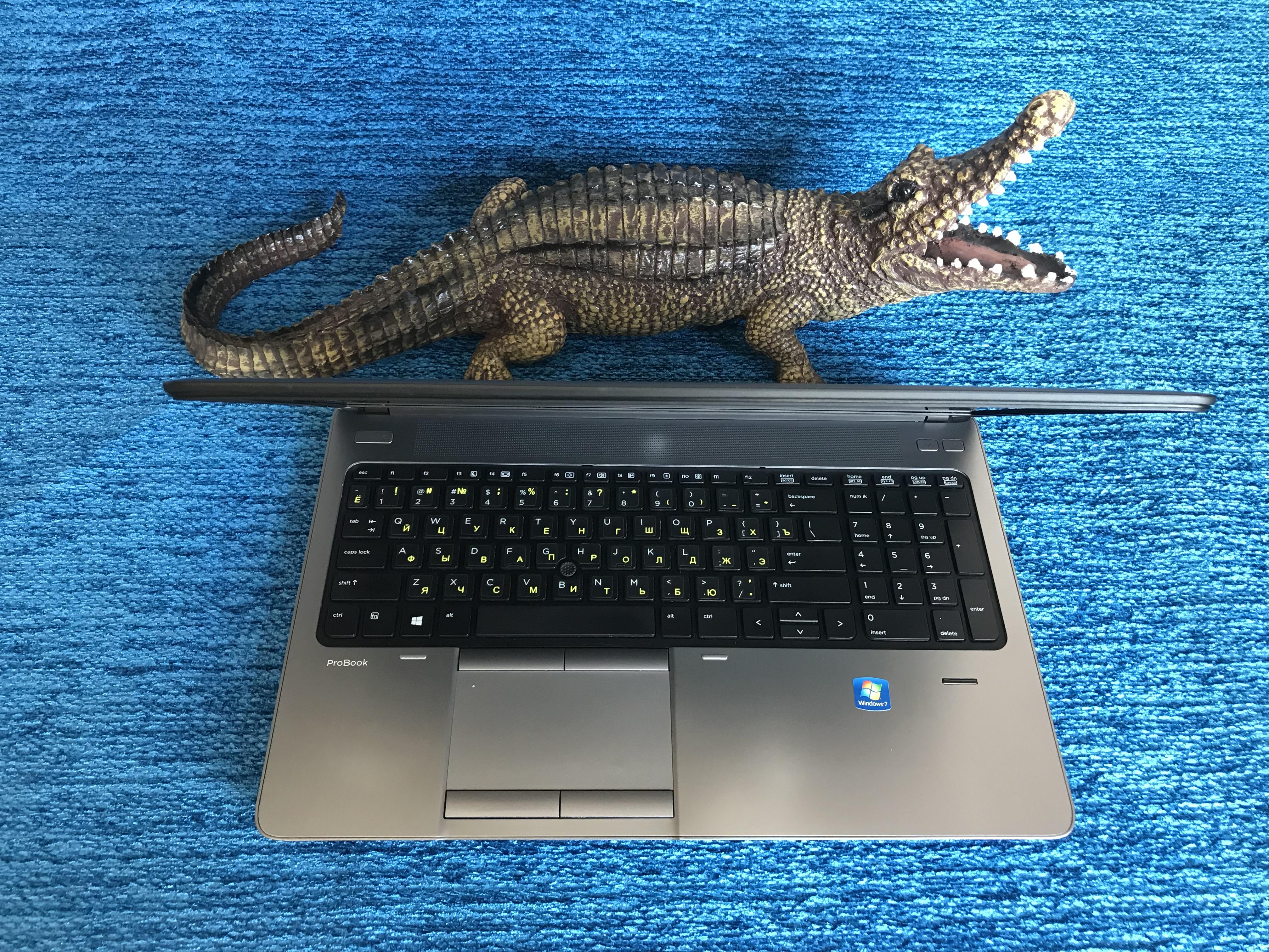 Ноутбук для бизнеса HP ProBook