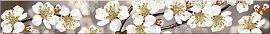 Бордюр Amati Sakura (50,5x6,2)