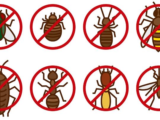 Средства от комаров, клещей и мух