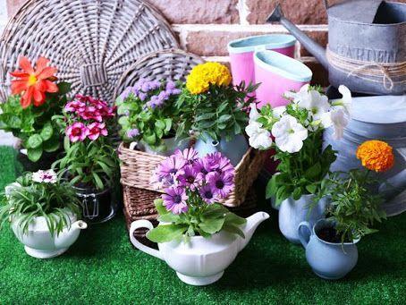 Аксессуары для комнатных растений