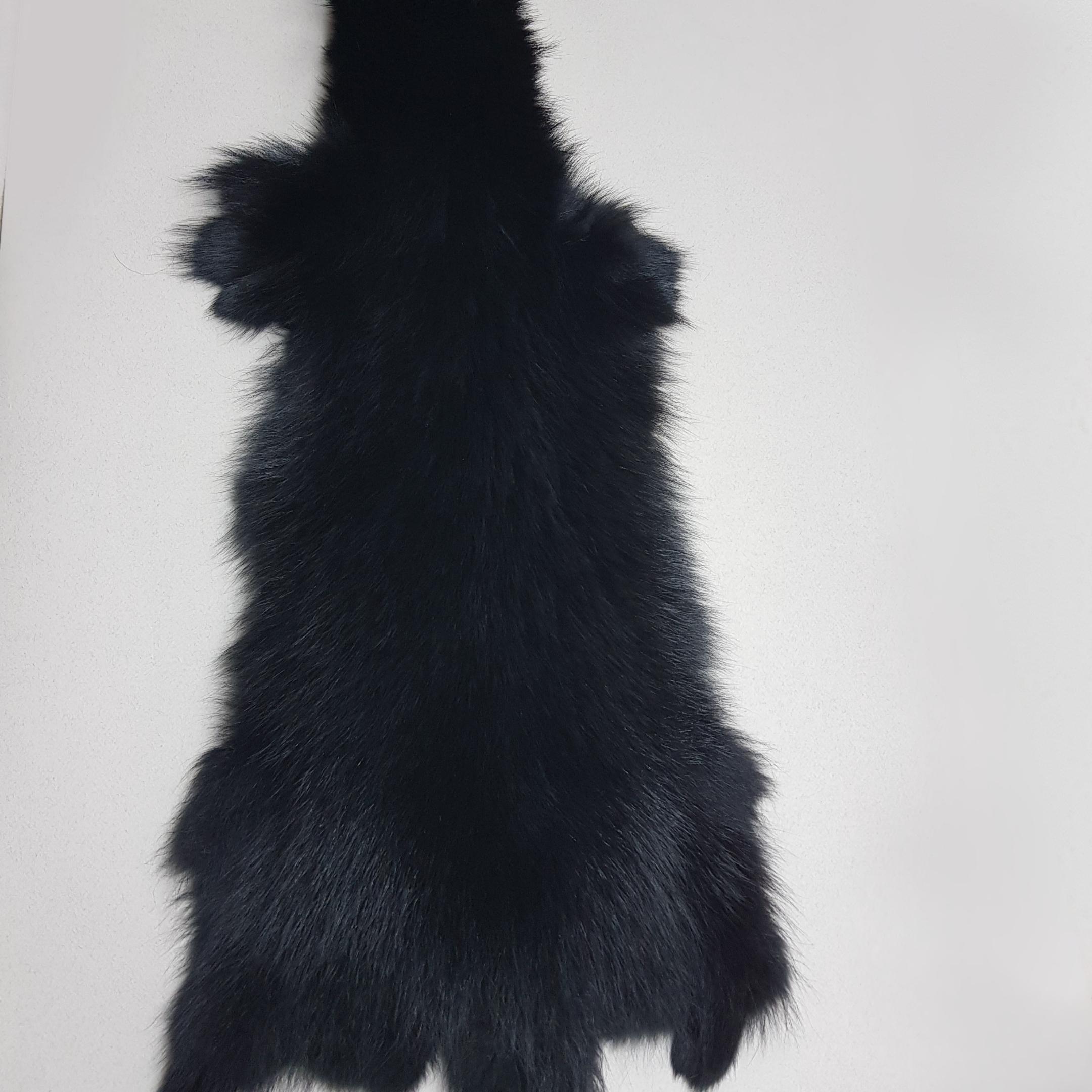 Енотовидная собака черная