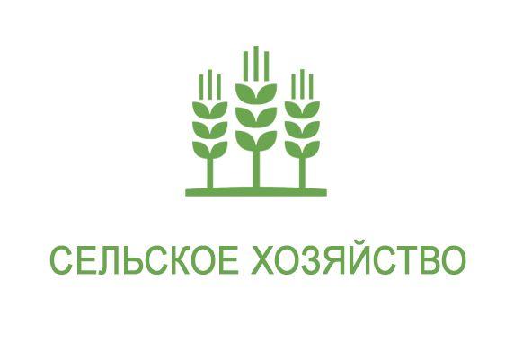 Применение анолита в сельском хозяйстве. Симферополь, Крым, РФ