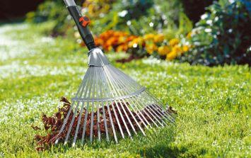 Сбор крупного и мелкого мусора, листьев, уборка травы