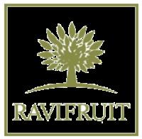 Равифрут