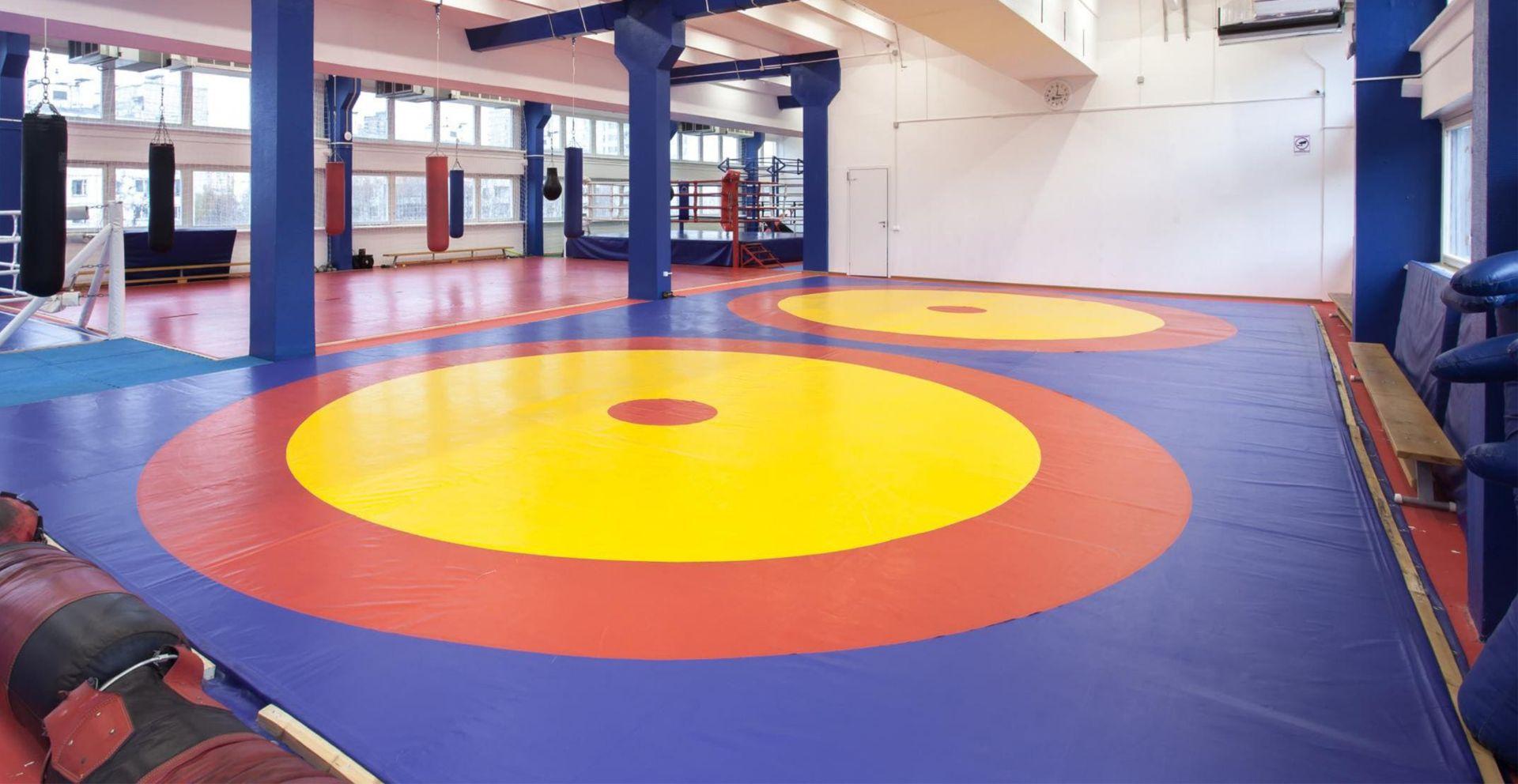 Спортивный зал борцовский ковер