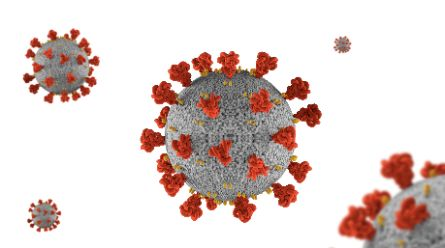 Обработка коронавируса Сочи COVID 19