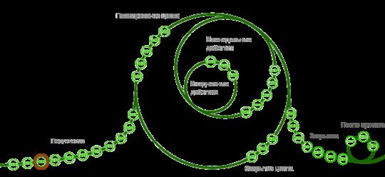 Структура активностей P3.express (P3X) для проектного управления