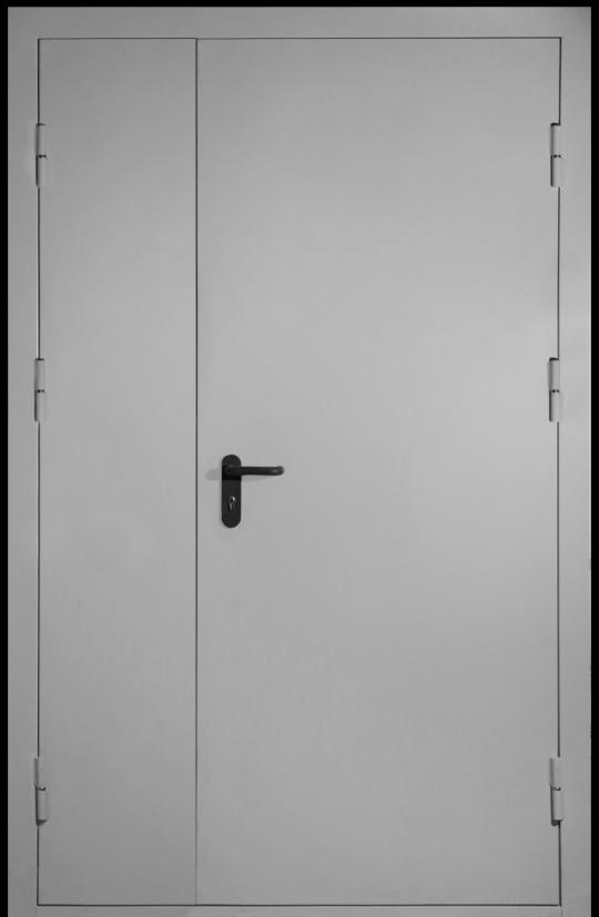 техническая дверь двупольная глухая