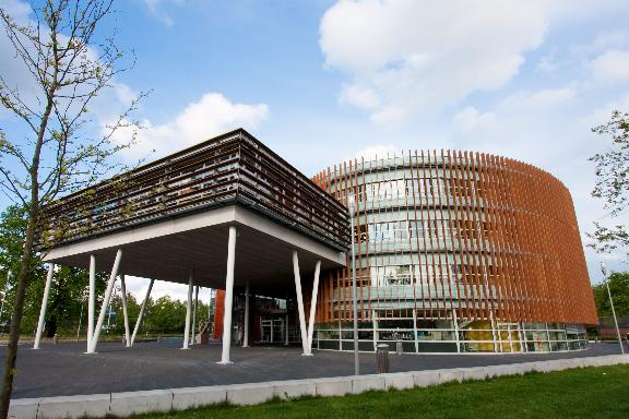 картинка Wittenborg University от агентства AcademConsult