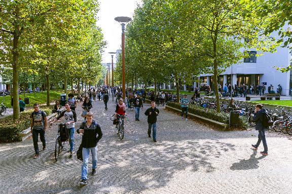 картинка Tilburg University от агентства AcademConsult