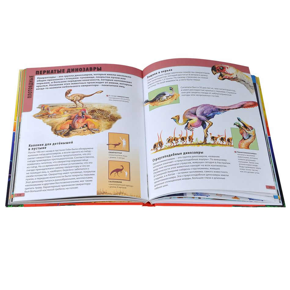 Фотосъемка книг детских