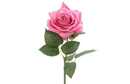 Предметная съемка для интернет-магазина цветов