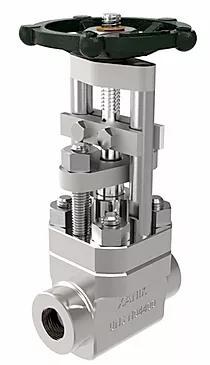 Кованые штанговые конструктивные клапаны