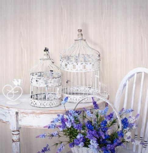 картинка Белый ясень 2043 от магазина Одежда+