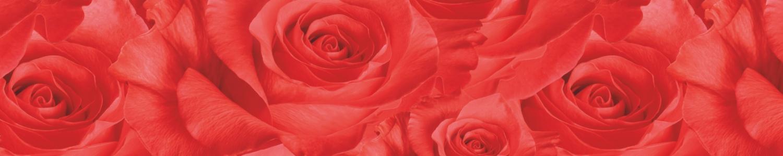 """картинка Фартук """"Розы"""" от магазина Одежда+"""