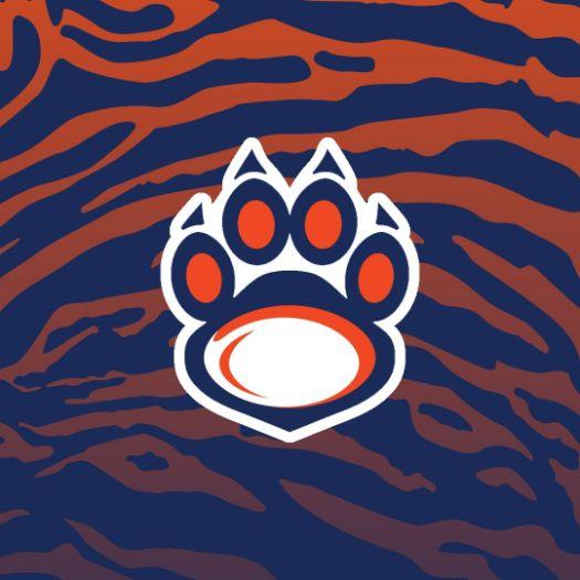 Владивостокские тигры | Регби-клуб