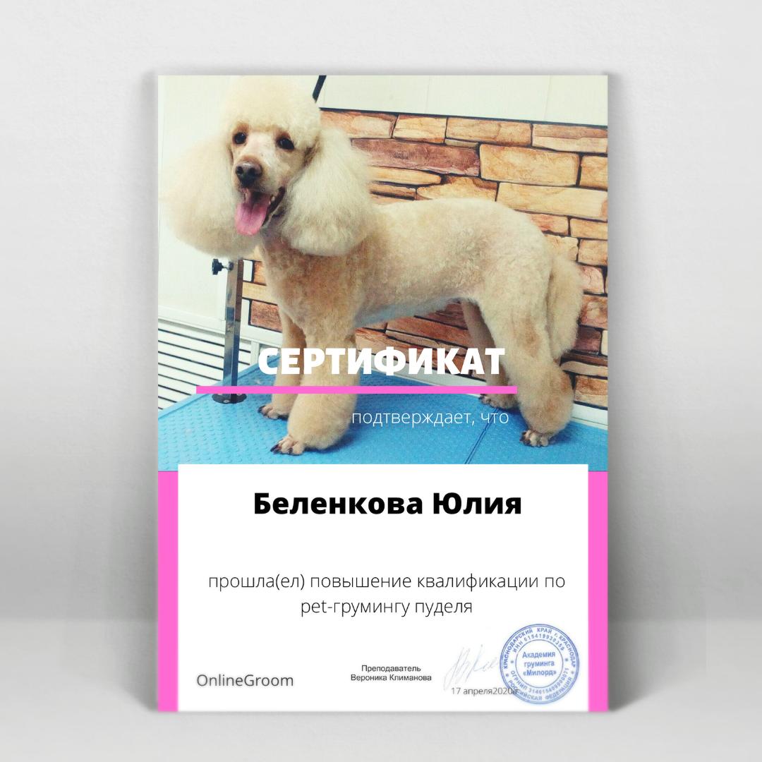Сертификат мастера ROCK DOG Юлии Беленковой