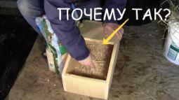 Гнездовье МакляК