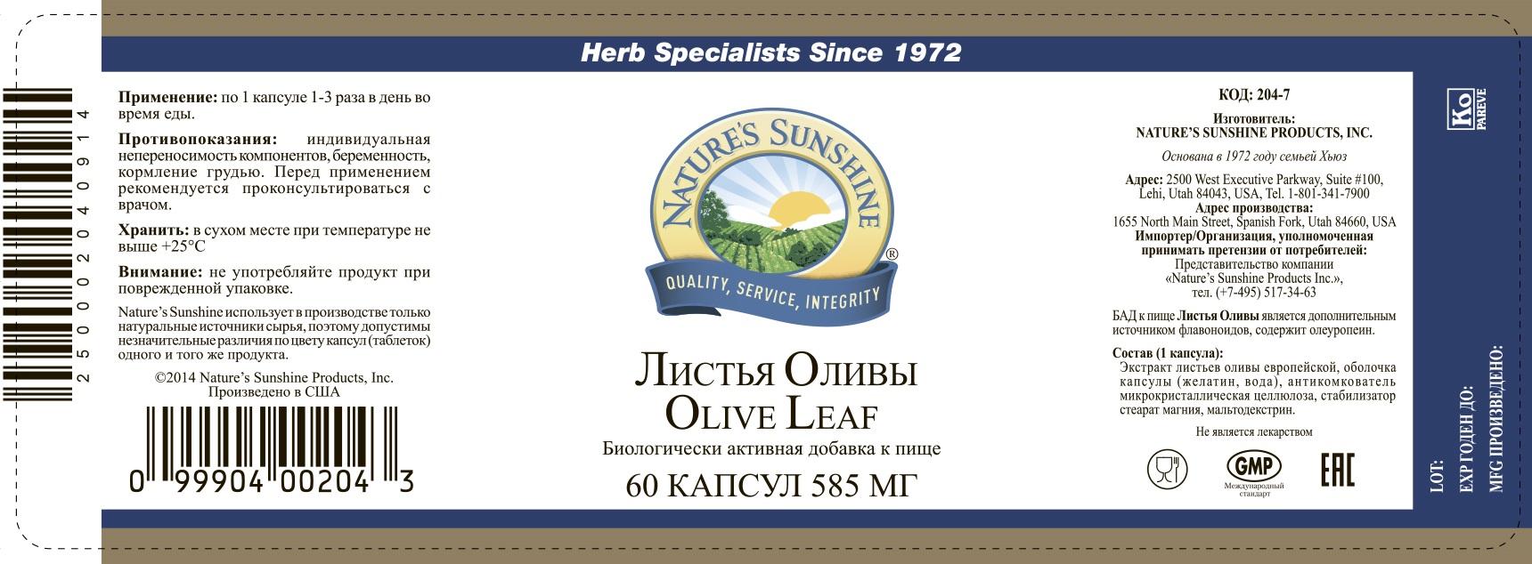 Картинка Листья оливы / Olive leaf от магазина Nature's Sunshine Products